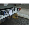 ATTELAGE Renault Master pick-up et chassis cabine 1998- - rotule equerre - attache remorque BRINK-THULE